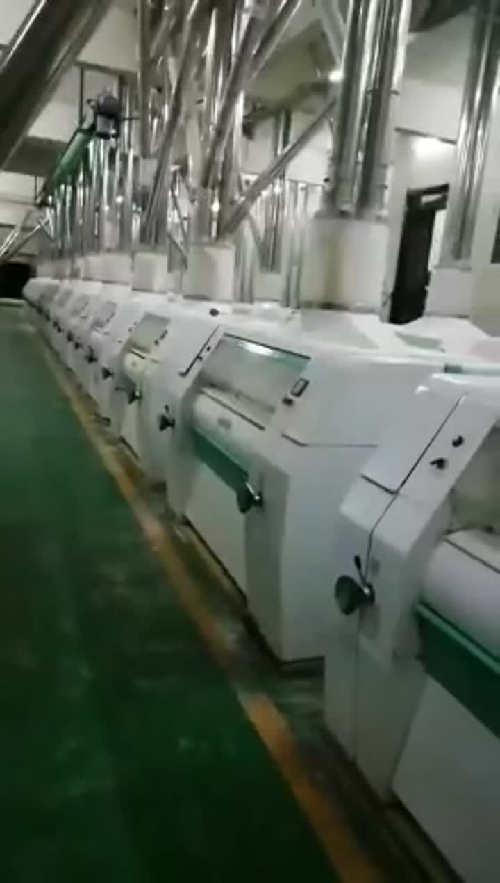 300 TPD Wheat-Flour-Mill.mp4