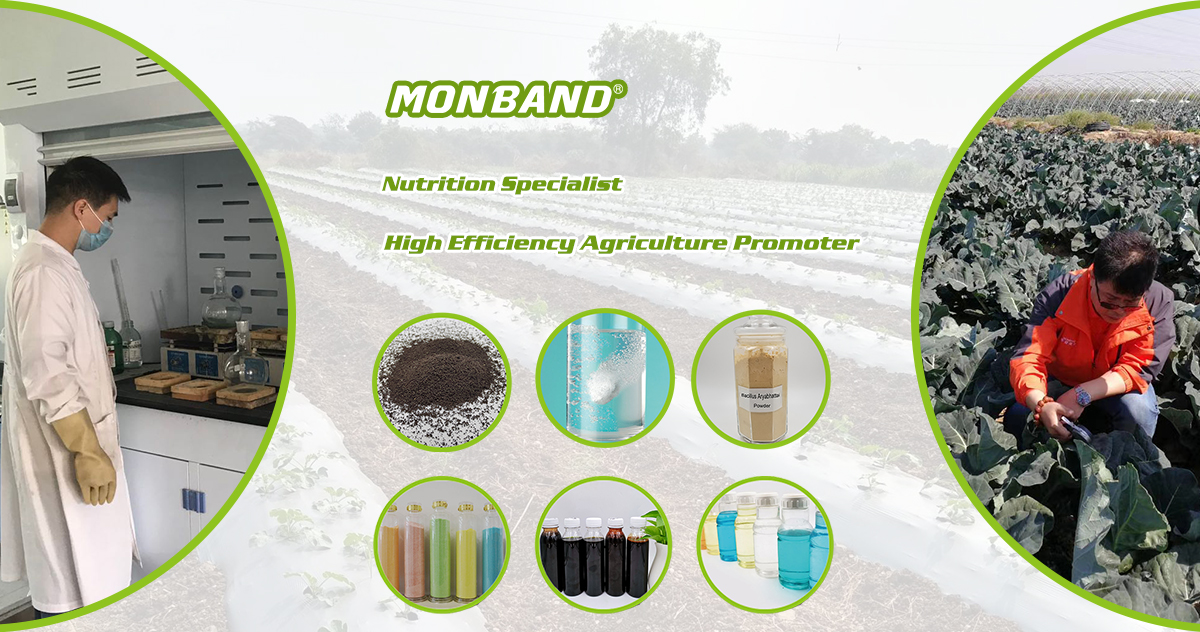 fertilizer supplier