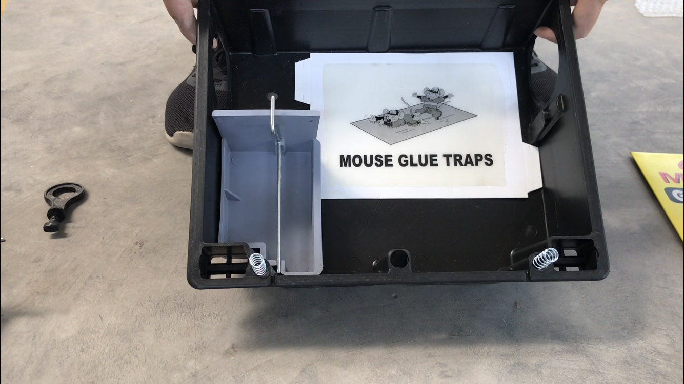 How to set a multi functional bait station?