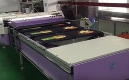 Digital T shirt Printer
