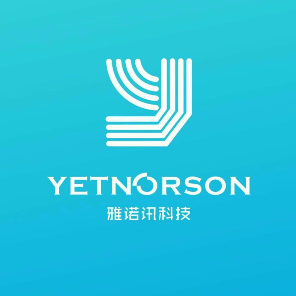 Shenzhen Yetnorson Technology Co., Ltd.