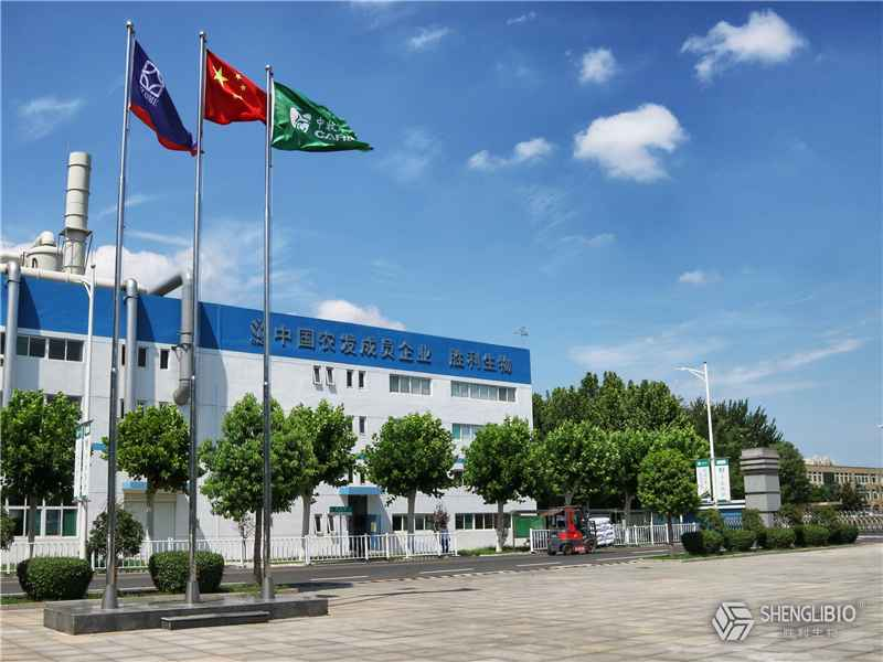 Shandong Shengli Bioengineering Co., Ltd