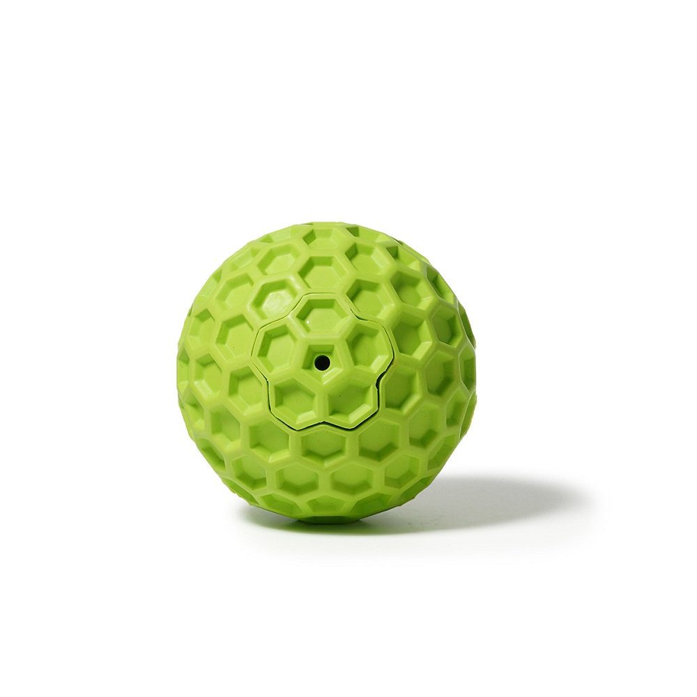 Squeaky Dog Ball Toy