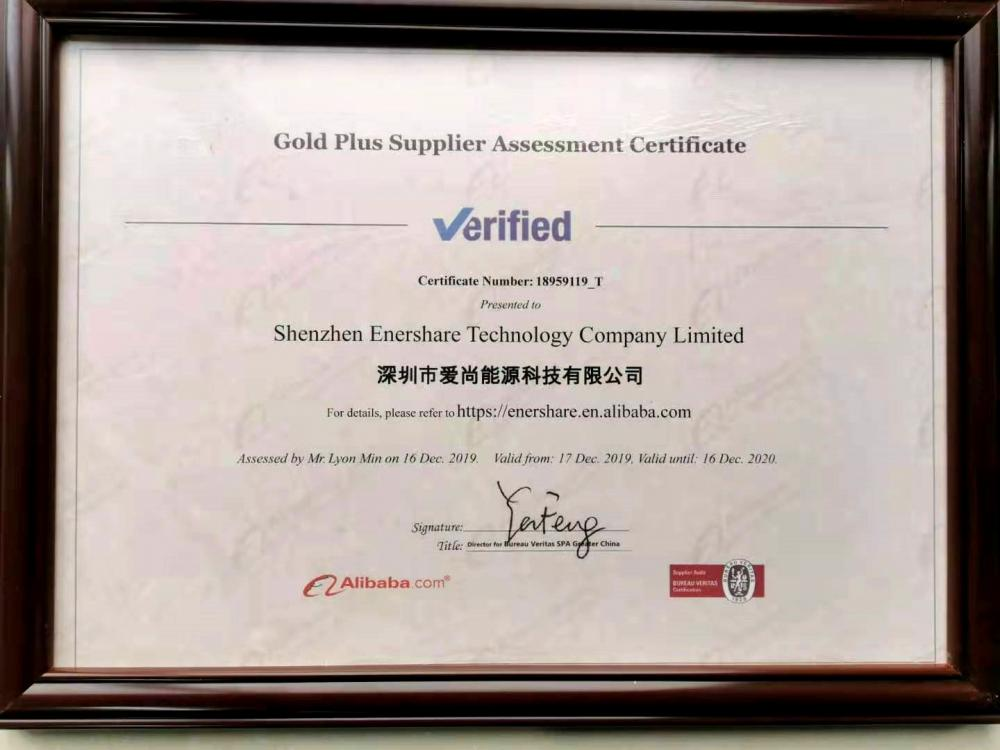 Gold Puls Supplier Assessment Certificate