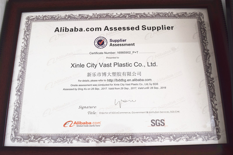 Alibaba Assessed Supplier SGS