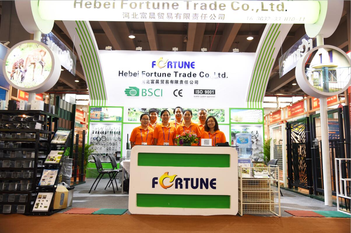 HeBei Fortune Trade Co.,Ltd.
