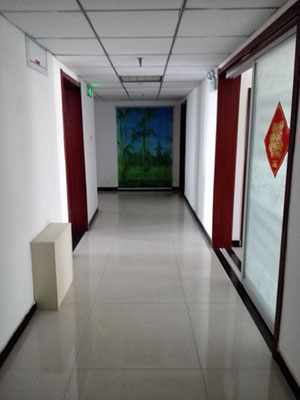 Shijiazhuang Hongmeida Co., Ltd.