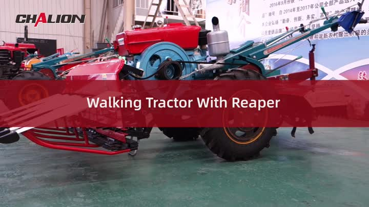 Mini-Wandertraktor mit reaper.mp4