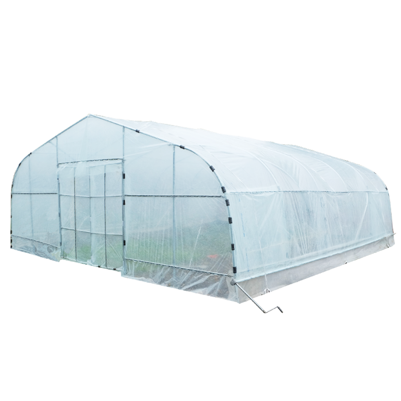 Tunnel Greenhouse 1