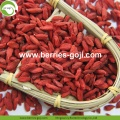 Pabrik Hot Sale Kering Tibet Wolfberry