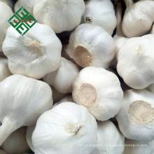 2018 new crop fresh natural garlic 3p / 4p /5p/ pure white garlic