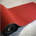 Waterproof Anti-Slip Door Mat Carpe with PVC Backing
