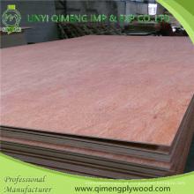 Poplar / madeira núcleo Bbcc grau 3mm Bintangor madeira compensada com preço barato