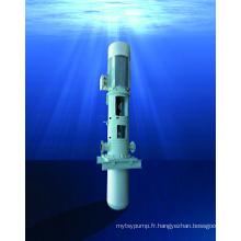 Pompe API verticale à eaux usées traitées