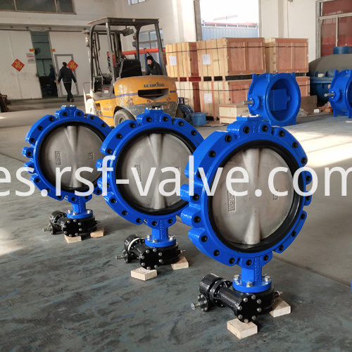Fully Lug Concentric Butterfly Valve