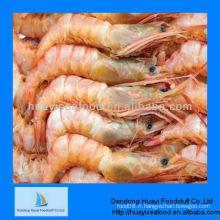 Crevettes rouges en haute mer congelées