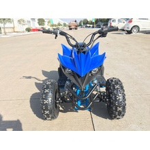 Two Strokes Update to Four Strokes with Unique Engine and Design Children Cheapest Mini Quad