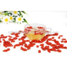 Ningxia zhongning Wolfberry Organic Goji Berries Vente en gros d'emballages en vrac