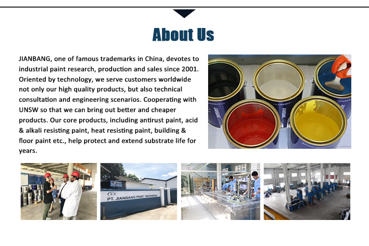 IMS silicone resin coating high heat resistant paint for roof