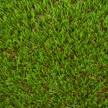 Tapis d'herbe artificielle de football de monofilament de diamant