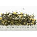 Natural Mango Flavoured Fruit Tea Bag Mix with Green Tea