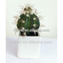 Haute qualité en pot artificielle mini plante cactus décoration intérieure pour la maison