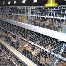 Pullet Chicken Cage Wire Mesh