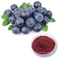 Vegan Spray / Freezed -dried blueberry powder