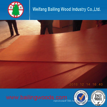 Hot Sale 18mm Bintangor Face Plywood with Competitive Price