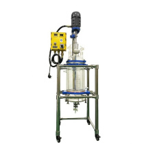 10L High Quality Frame SUS with Spray PTFE Pyrolysis  jacked glass reactor filter