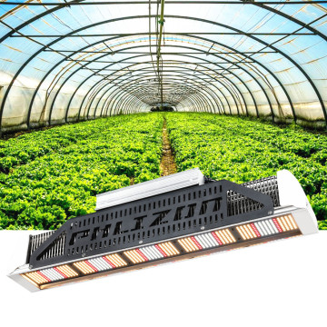 Tablero cuántico Led Grow Light 240W Regulable