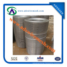 High Quality 1X1 Inch Galvanized Square Welded Wire Mesh (ADS-SW-07)