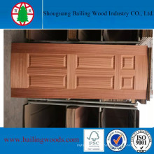 4.7mm House General Use Moulded Doorskin