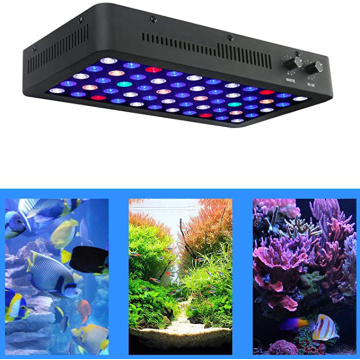 165W Phlizon Led Aquarium Light para peces
