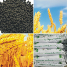 Qingdao Future Group 70% Humic Acid Granular Organic Fertilizer