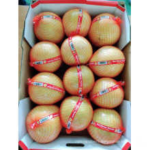 China Honey Pomelo Cheapest Price Export to Europe High Quality