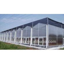 10 ans de qualité Résine de polycarbonate nouveau matériau de construction feuille de polycarbonate à double paroi pour toitures auvent de lucarne