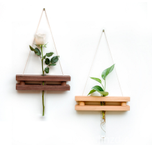 wooden hanging glasses text tube plants shelf pot