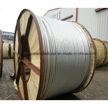 Electrical Wire ACSR for Overhead Power Transmission Lineaerial Elect