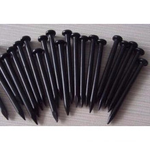 High Standard Black Concrete Nails Factory--Holland Quality
