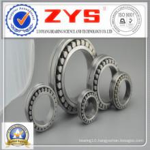 Cylindrical Roller Bearings Nn30/500k