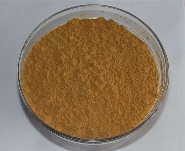 Eucommia Ulmoides Extract Powder
