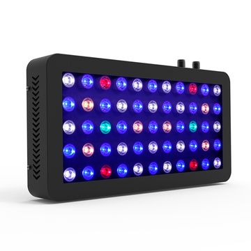 Marineland Led Fish Aquarium Light può essere personalizzato