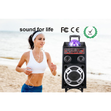 Hot Selling 15 Inches Plastic Trolley DJ Speaker with Battery