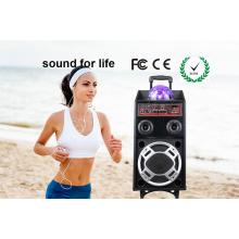 Heißer Verkauf 15 Zoll Plastiklaufkatze DJ-Lautsprecher mit Batterie