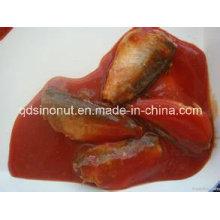 425g Canned Mackerel en salsa de tomate (HACCP, ISO, BRC, FDA, etc)