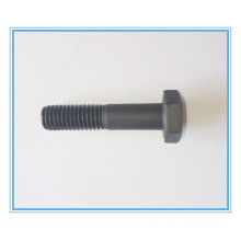 DIN7990 Structure Bolt/ Hex Head Bolt