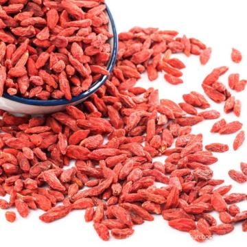 Ningxia fresh dried goji berries export kenya