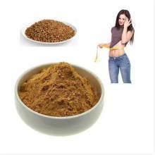 Compre ingredientes ativos online em pó de extrato de trigo mourisco