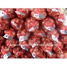 Supplying Chestnut 2011 Corps